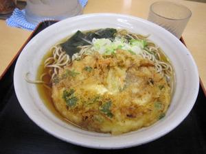 Img_0061_umemoto_nokuti