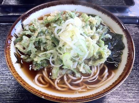 Img_0851_asahi_yamato_shungiku_360y