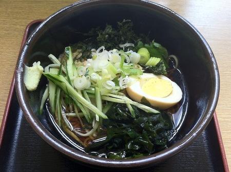 Img_1419_tidori_hiyasitanuki_400