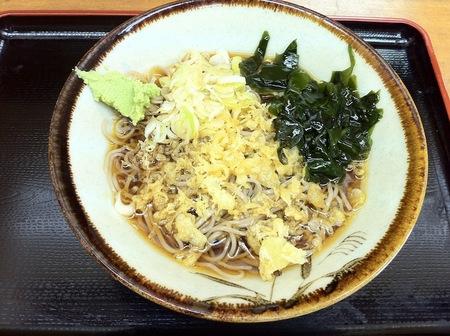 Img_1687_kamejima_hiyasiyanuki_270
