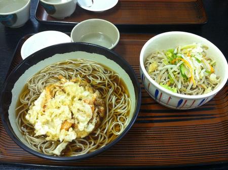Img_2594_nippoan_nishoku_480
