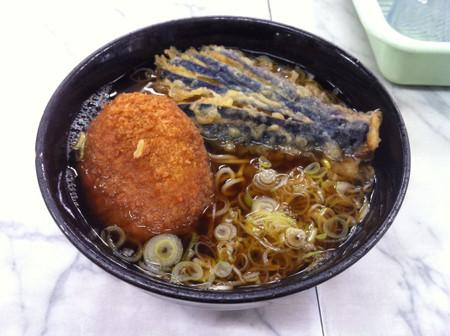 Img_3705_yamatoya_nasu_coroke_480